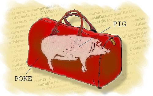 pig-in-poke