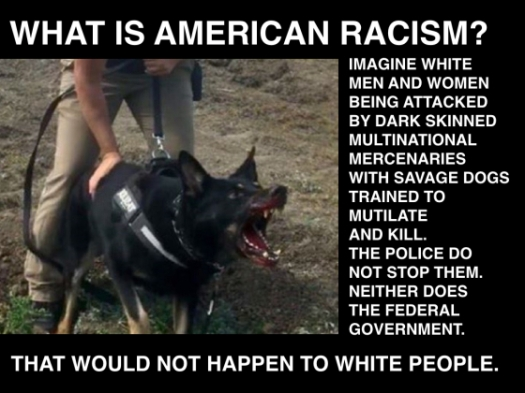 american-racism-attack-dogs-001