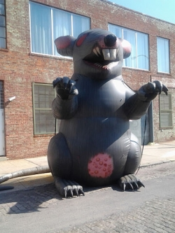 elk_scabby_the_rat_retirement_250_333