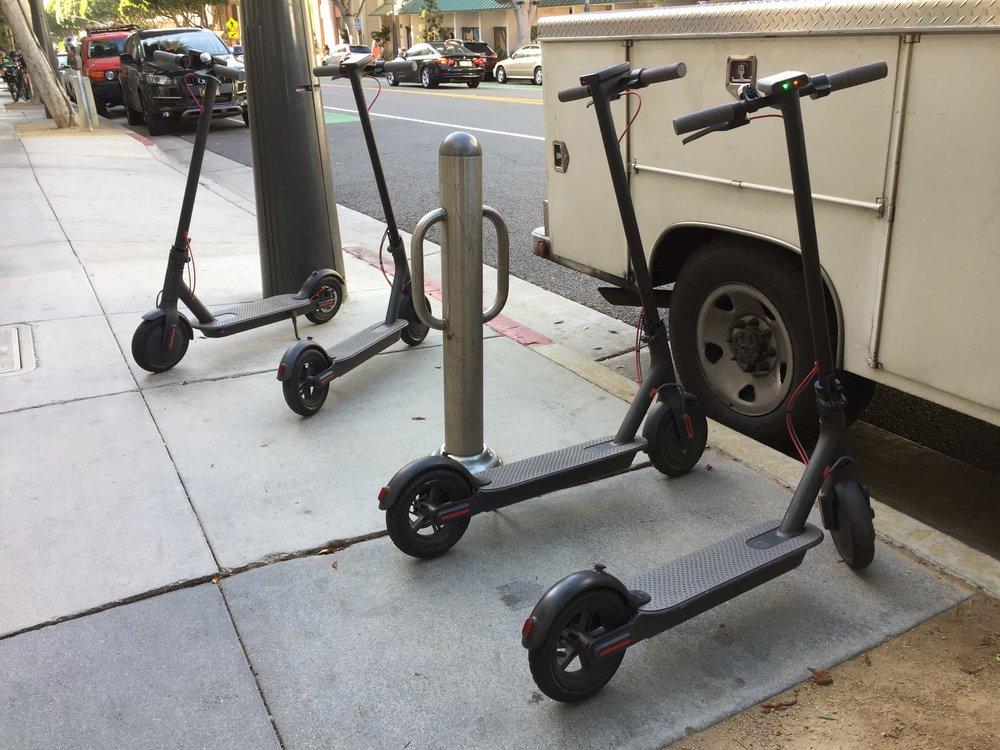 bird-scooters-on-sidewalk-parked-app-santa-monica-los-angeles